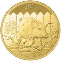 1 once pièce d'or pur 999.9 - Lunar Cochon BU 2019