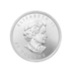 1 Unze FeinPalladiummünze 999.5 - Maple Leaf Zufälliges Jahr