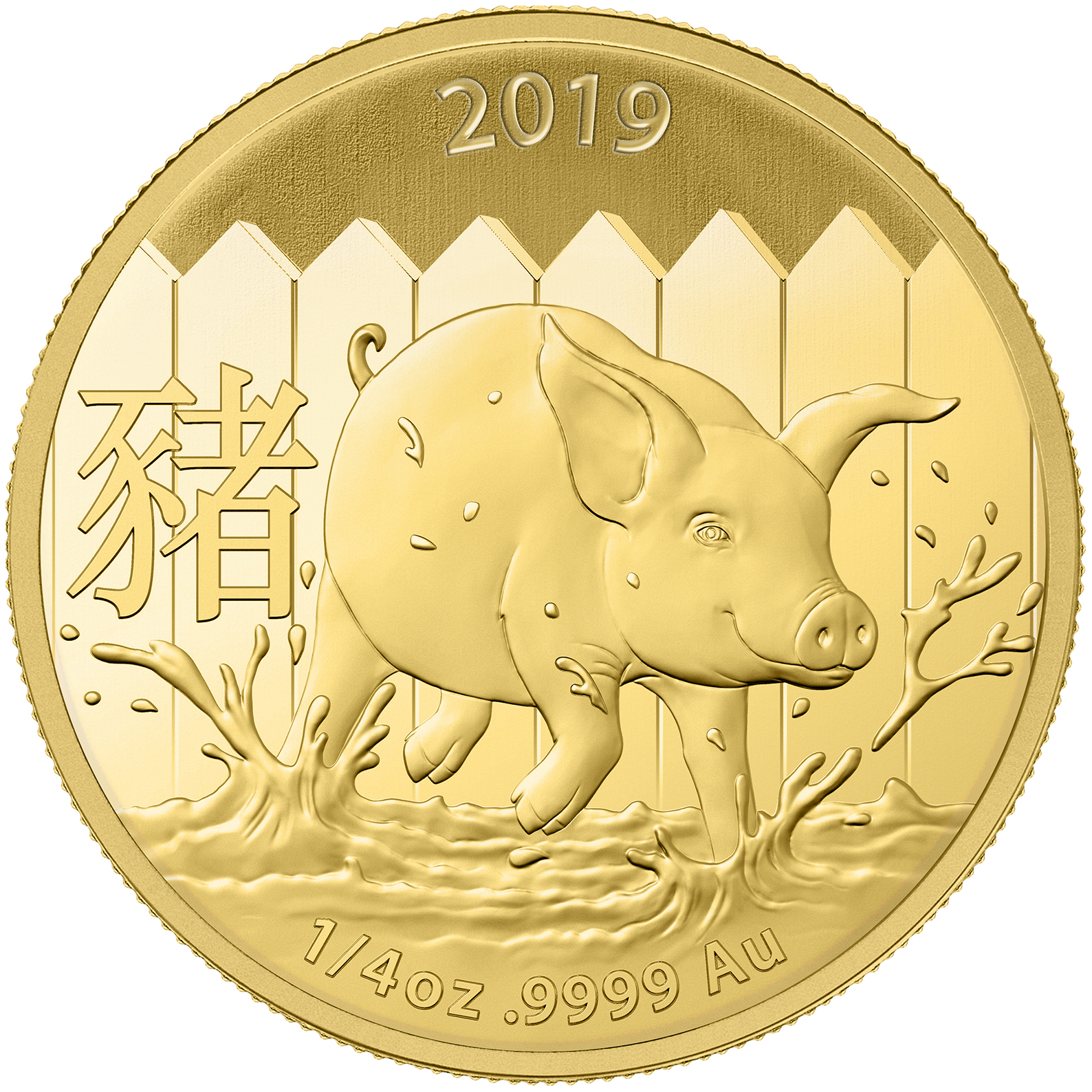 1/4 oz Gold Coin - Lunar Pig BU 2019