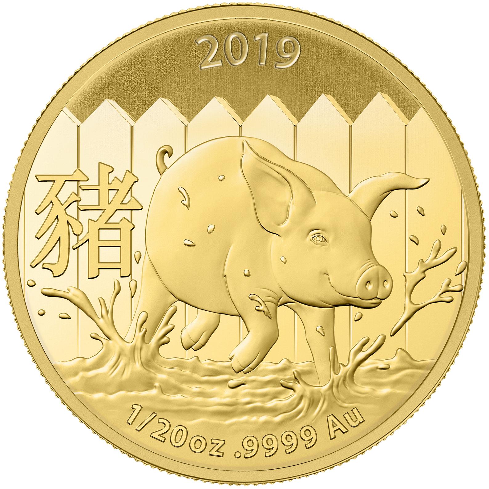 1/20 once pièce d'or pur 999.9 - Lunar Cochon BU 2019